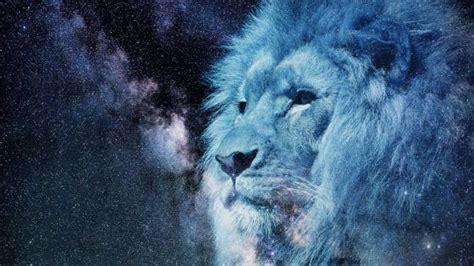 lion wallpapers wallpaper studio  tens  thousands