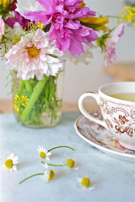 chamomile tea  fresh flowers simple seasonal