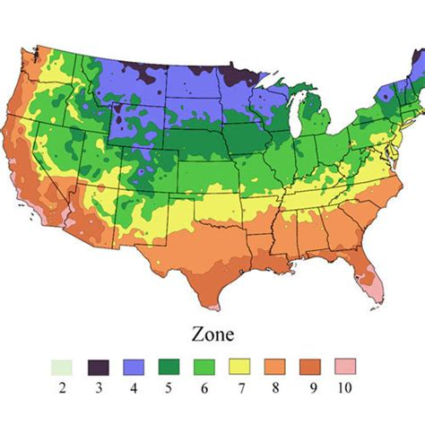weather zones for gardening plant hardiness climate zone calculator garden