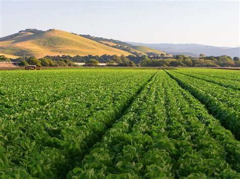 Agricultural Finance From Crops To Land Water And Ebook E Book california american farmland trust