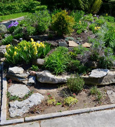 Small Rock Garden Small Rock Garden Design Ideas Rachael Edwards