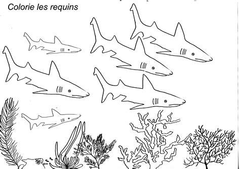 Poissons 233 Cole Maternelle Dessin A Colorier De Requin Blanc L