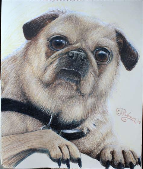 ellie the pug ellie the pug by artbyjpp on deviantart
