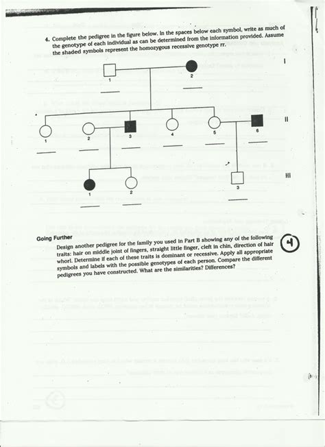 Pedigree Chart Worksheet by Tay Sachs Pictures And Charts Related Keywords Tay Sachs