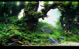 aquarium backgrounds pictures wallpaper cave