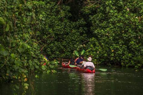 kauai river boat tours wailua jungle river safari 4 5 hour tour kauai