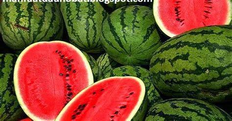 manfaat buah semangka  ibu hamil   kesehatan