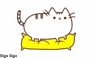 fotos do smilinguido que se meche imagem imagens divertidas que se mexem gato gif wikia
