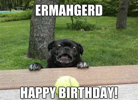 Happy Birthday Animal Meme - 100 ultimate funny happy birthday meme s my happy