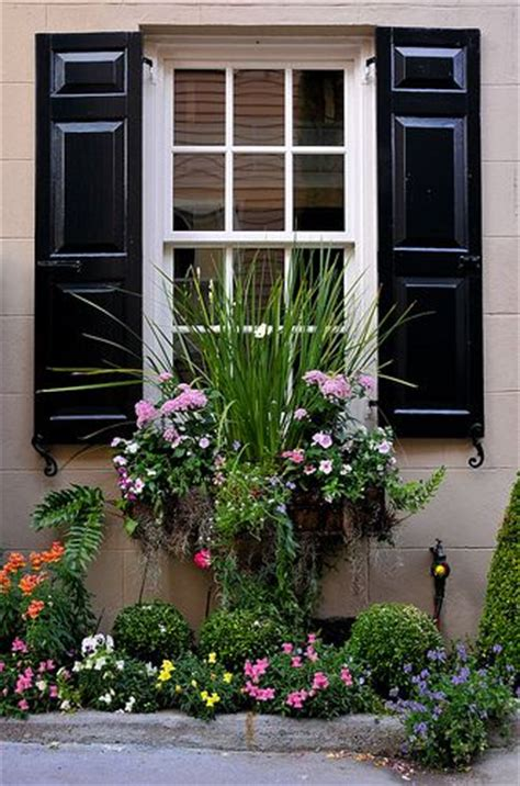 shutters and window boxes charleston green shutters window box meet me in the