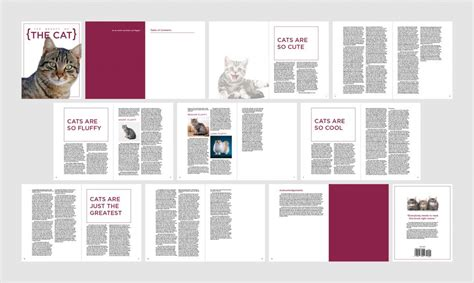 a table of contents with indesign annenberg