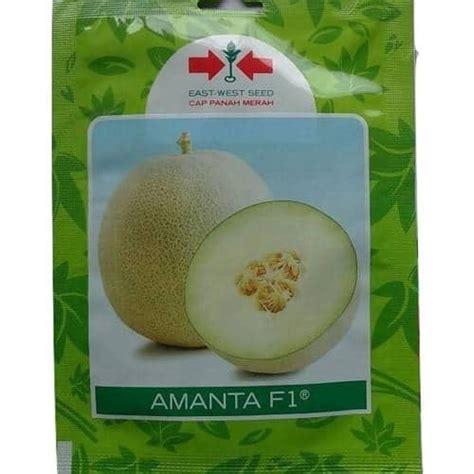 Benih Melon Cap Panah Merah jual benih melon amanta f1 40 biji panah merah bibit