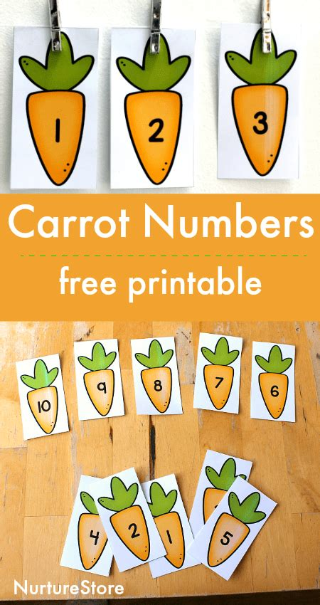 Free Printable Number Cards
