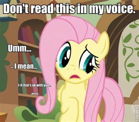 Mlp Fluttershy Meme - my little pony meme fluttershy memes