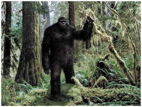 the of bigfoot fantastic dreams of k kinney july 2012