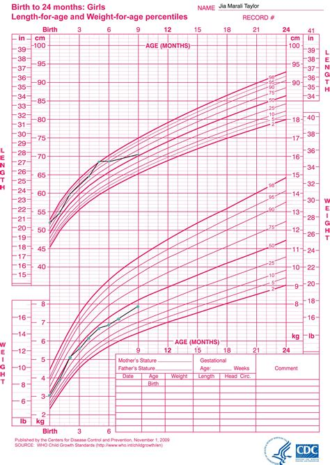 chart fetal infant growth chart girls template best fenton for
