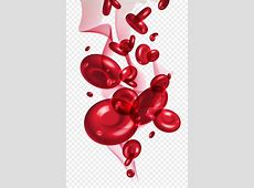 Red blood cell - cell png download - 1251*1928 - Free ... Free Clipart Of Valentine's Day
