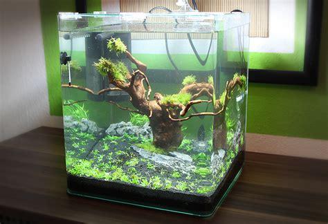 cube aquarium aquascape nano cube tag 2 http www aquascaping forum de