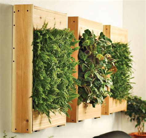 Vertical Wall Planter Boxes by Indoor Living Wall Planters The Green