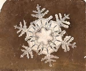 William Bentley Snowflakes William Morris Fan Club Quot Snowflake Quot Bentley S Fleeting