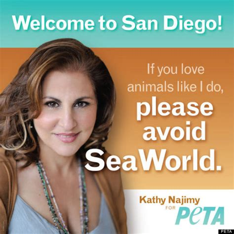 peta sues san diego airport authority for barring anti sea world ad photo huffpost