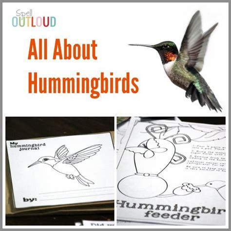 17 best images about unit birds on pinterest montessori