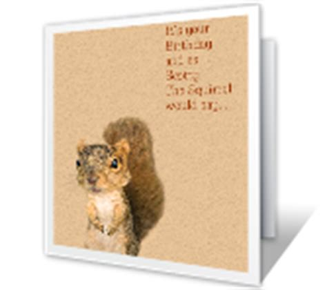 printable birthday cards with squirrels funny printable birthday greeting cards american greetings