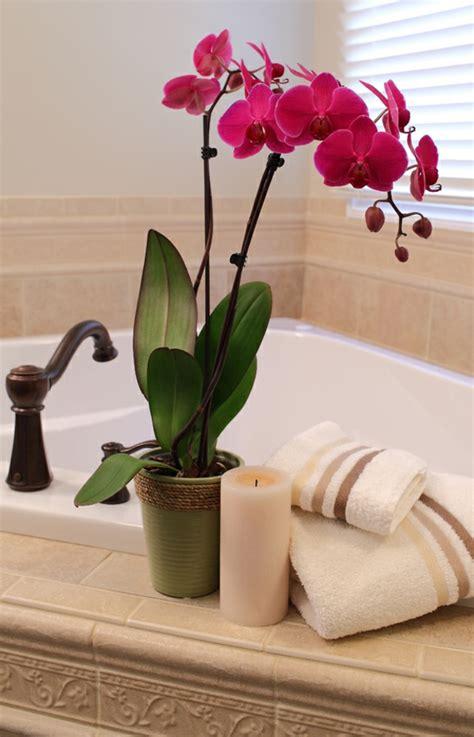 gelbe badezimmer dekorieren ideen deko mit orchideen 31 kreative ideen archzine net