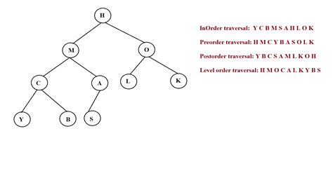 binary trees algo tutor