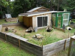 Shed Care by Sulcata Tortoise Pen New Tort Shed And Pen For Sulcata Tortoise Forum Tortoise