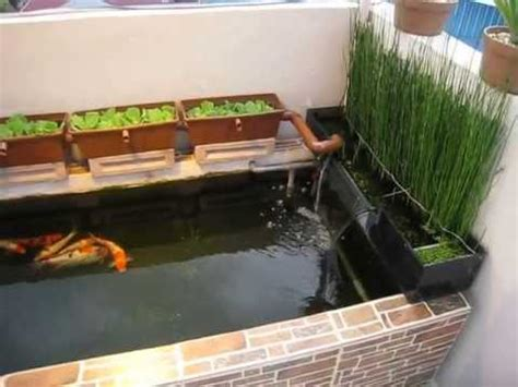 Lu Uv Kolam Koi mini koi pond