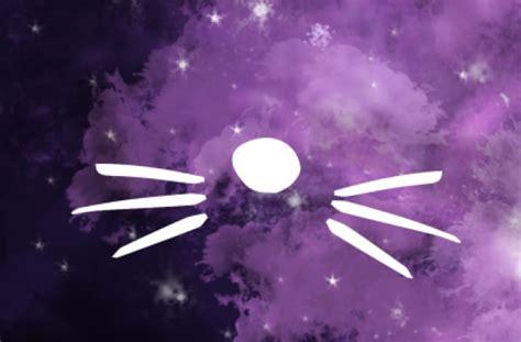 Wallpaper Dan Cat | tag for cat edits tumblr background wallpapers litle pups