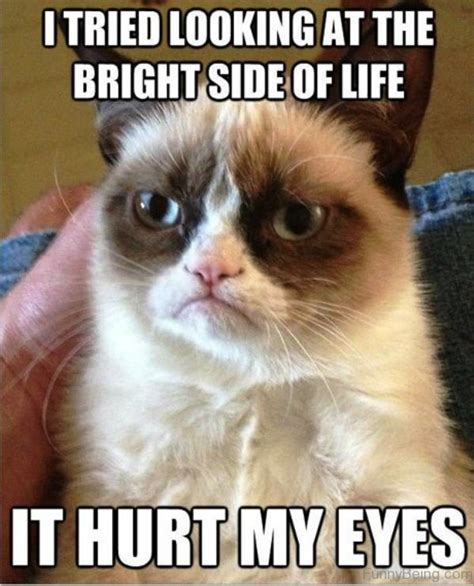 Memes About Life - funny memes about life www pixshark com images