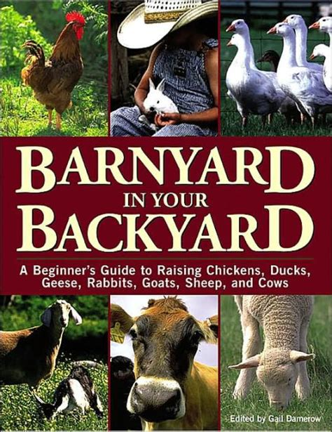 Guide To Raising Backyard Chickens Barnyard In Your Backyard A Beginner S Guide To Raising Chickens Ducks Geese Rabbits Goats