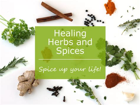 13 Medicinal Herbs And Spices by Healing Herbs And Spices By Wellness Free Ebook