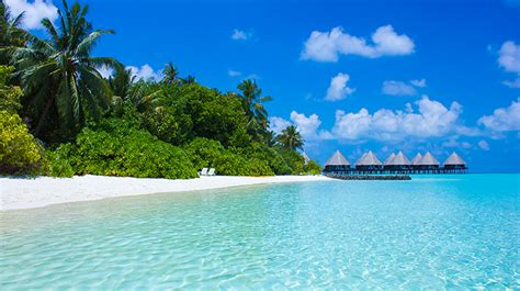 tahiti travel guide forbes travel guide