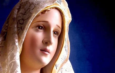 imagen de maria virgen fiel virgen mar 237 a archivos forum libertas