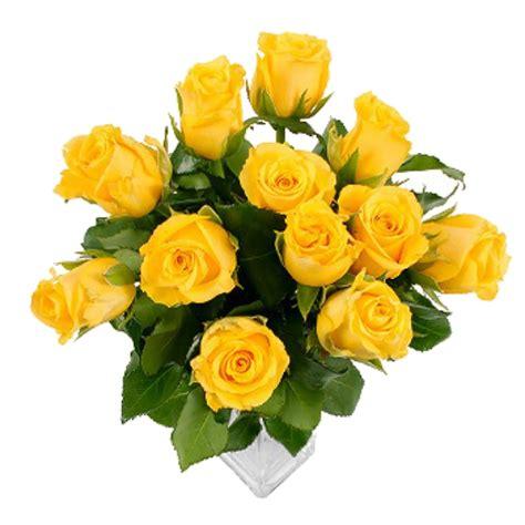 imagenes de flores rosas amarillas gifs y fondos galilea rosas amarillas