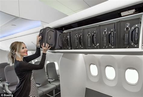 Alaska Airlines Cabin Baggage by Boeing Ends The Goose For Empty Cabin Space