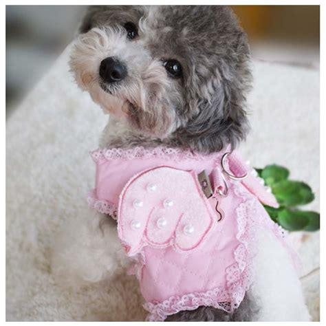Cutest Cats Pet Pet Pet Product 7 by Aliexpress Buy Pink Adorable Pet Cat