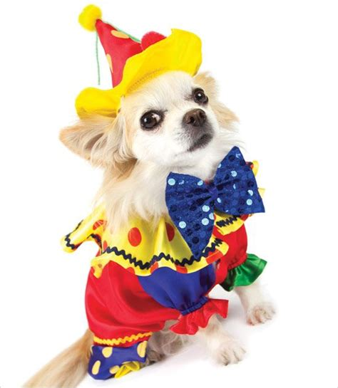 clown costume for dogs clown costume puppy costumes clown costumes and clowns