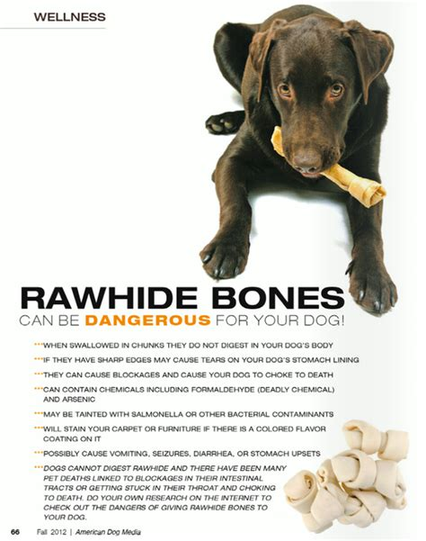 is rawhide for dogs category chews
