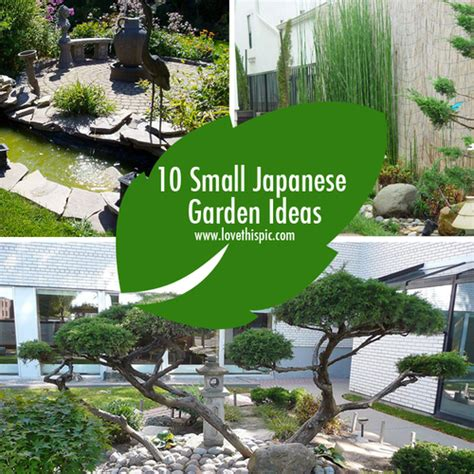 Small Japanese Garden Ideas Small Japanese Garden Home Design
