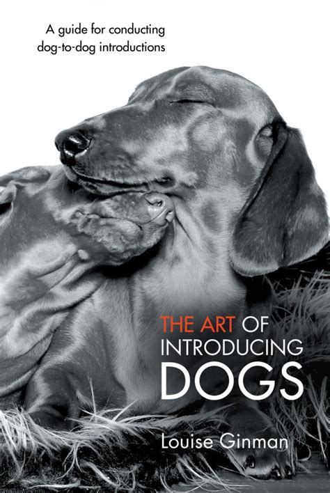 introducing dogs the of introducing dogs dogslife breeds magazine