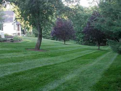 guroy lawn care