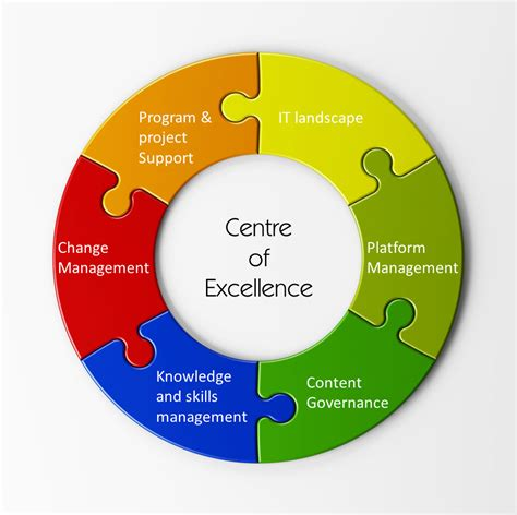 Center Of Excellent | bpm center of excellence coe the process balance