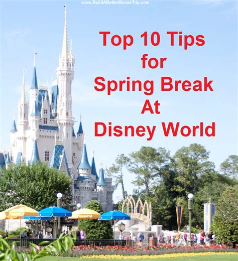 disney world tips build a better mouse trip