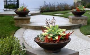 Small Container Garden Ideas Singing Gardens San Diego S Landscape And Garden Designer Hopes To Revitalize Your Outdoor