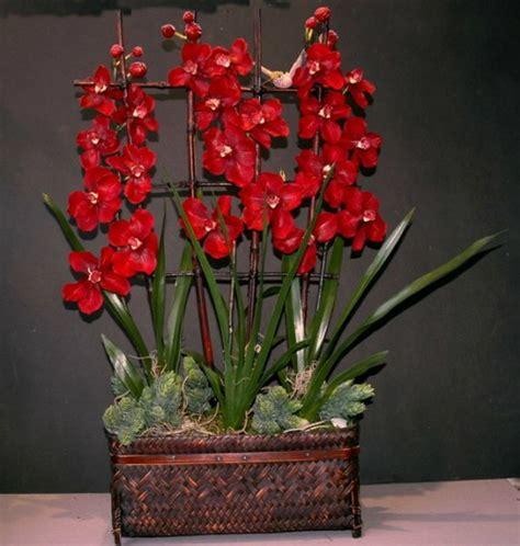 dekoration mit orchideen  exklusive erfrischende ideen