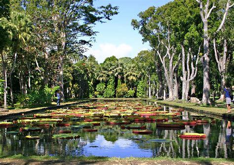 Mauritius Botanical Garden Mauritius Attractions And Landmarks Wondermondo